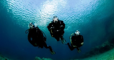 drysuit divers