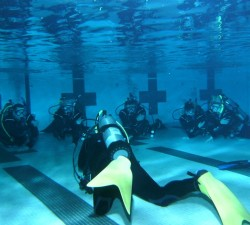 Dive Course in Pool Nanaimo